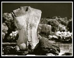 headless (davidhartstone) Tags: blackandwhite bw thailand ruins buddha ayuthaya fauxinfrared quadtonefake