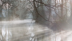 Light and fog on the river (jipol) Tags: light france fog wow wonderful river gorgeous reflect vectis s1 aps 900 25faves abigfave tepasaste anawesomeshot impressedbeauty diamondclassphotographer