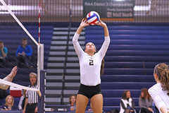 IMG_8311 (SJH Foto) Tags: girls volleyball high school york delone catholic team teen teenager setter