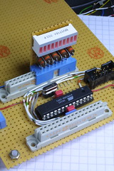 AVR microcontroller board: LEDs plugged in