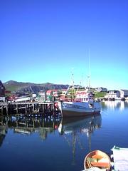 gjesvaer harbour (norvegia2005sara) Tags: love norway norge sara harbour north deep norwegen norvegia northcape nordkapp buoyant mageroya gjesvaer top20blue norvegiasara