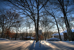 Keep Right 12.1.2005 (Notley) Tags: morning trees winter snow tree shadows 2006 missouri snowday keepright bocomo 10thavenue notley ruralphotography boonecountymissouri notleyhawkins missouriphotography httpwwwnotleyhawkinscom notleyhawkinsphotography boonebounty