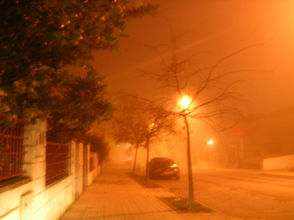 niebla 1 055