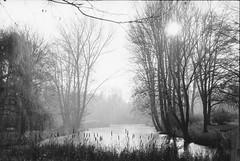 Wintersonne am Teich vor dem Brandenburger Tor (Photodendron) Tags: park autumn winter berlin fall germany deutschland herbst 13 mitte ilford tiergarten ilfordfp4 microphen