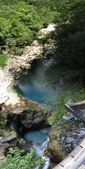 From above (Jumpin'Jack) Tags: panorama green nature river landscape stream near slovenia bled gorge msh vintgar blejski greatnature msh0906 msh090619 utataview jpingjk