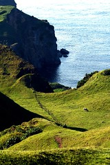hiyas (Farl) Tags: ocean travel blue sea color green colors grass landscape islands cow cattle philippines hill farming north culture pasture organic basco tradition grazing southchinasea batanes chadpidan
