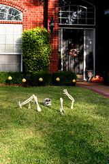 half a skeleton (cmiked) Tags: october texas waco 2006 utatainhalf