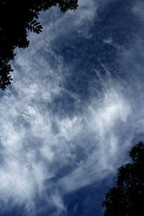 The sky revealed (Erik Kolstad) Tags: sky cloud weather clouds contrast photoshop skyscape xray processing editing framing levels cirrus postprocessing