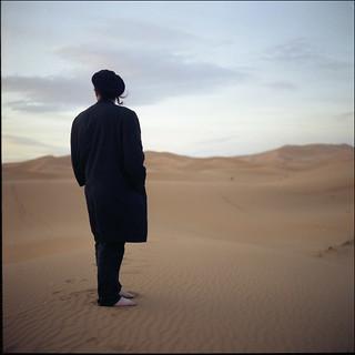 snarl in the desert