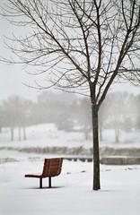snow fall (kirb_3) Tags: snowfall sheboygan