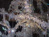 Crystal Tree (sjnewton) Tags: 2003 christmas uk england colour tree london december display crystal sony shapes forms swarovski southkensington victoriaalbertmuseum cromwellroad leadcrystal dscp12 sw72rl