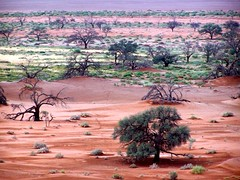Sossusvlei Landscape (geoftheref) Tags: africa travel de landscape la landscapes interestingness interesting sand flickr desert 5 south dune paisaje 100v10f paisagem il safari afrika fav paysage barren landschaft namibia paesaggio landschap sossusvlei  frica namibie lafrique namibi  abigfave geoftheref nambia dellafrica  afrikasafari