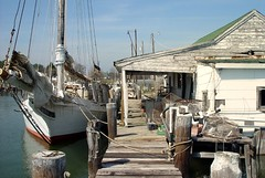 Skipjack at dock (wortenoggle) Tags: bay maryland somerset shore sail oyster eastern chesapeake dealisland woodboat commercialfishing skipjack