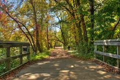 The-Bridge (jason_minahan) Tags: new bridge autumn fall canal nj princeton jersey hdr mercercounty