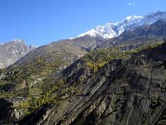 Irrigation Transforms Barren Mountains (go2net) Tags: pakistan shangrila karakoram hunza