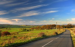 Bowfield Road (Scott Foy) Tags: road autumn trees clouds canon scotland fields a620 renfrewshire howwood specnature bowfieldroad scottfoy