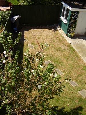 back garden August 2006
