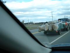 Leaf collectors, Route 2. PEI.