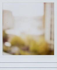 overexposed, no filter (Viv   Seattle Bon Vivant) Tags: test film analog vintage polaroid sx70 ebay ishootfilm scanned filmcamera sonar analogphotography ndfilter epsonperfection2450 polaroidsx70landcamerasonaronestep 600writeonfilm staplescom vintagefilmcamera