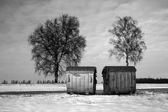 Waste containers #2 (Markus Moning) Tags: schnee trees sky blackandwhite bw white snow black tree garbage cloudy himmel container rubbish civilization sw waste refuse schwarzweiss canoneos350d weiss bume mll civilisation baum schwarz lithuania abfall siauliai moning lietuva litauen bewlkt iauliai zivilisation abfallcontainer markusmoning newphotographer