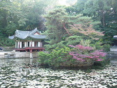 The Secret Garden (Kalle Anka) Tags: travel asian asia asien capital korea east seoul asie southkorea secretgarden rok daehanminguk biwon  changdeokgung  eastasia  corea   republicofkorea   changdeokpalace hanguk        koreanpeninsula
