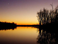 Evening Sky In November Ⅷ (mightyquinninwky) Tags: trees reflection geotagged pond pod 10 kentucky award lexingtonky richmondroad eveningsky invite fayettecounty amazingshot praiseworthy centralkentucky flickrgold superbmasterpiece superhearts 1on1sunrisesunsetsphotooftheweek geo:lat=37989986 geo:lon=84433997 sunrisesunsetsphotooftheweekaugust2007 jasonpresser 11223344556677 bestofformyspacestation