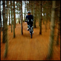 hanne on mtb (kiplingflu) Tags: trees brown fall girl speed woods action mountainbike favme mtb fv10 panning hanne vtt mol kempen i500 sunparcs