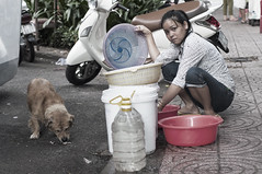 Stray (Marcus Macksad) Tags: vietnam vietnamese nikon d90 50mm asia dog stray animal pet street vendor