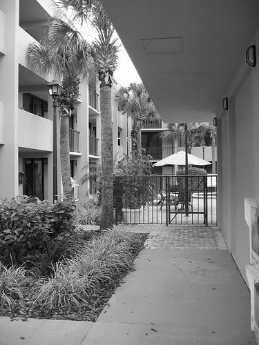 The Hotel In Orlando