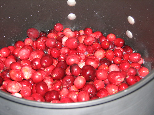 bubbling cranberries