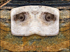 Worried Wood (nomm de photo) Tags: wood eyes photoshopped driftwood digitallyaltered reinnomm