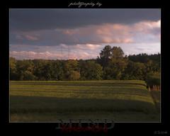 Sunset on a field