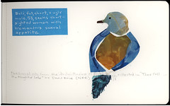 bald,fat,short,ugly (R.bean) Tags: moleskine birds collage drawing journal sketchbook dessin carnet personalads