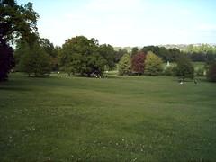 Darley Park 2 (Fluffs) Tags: park trees landscape