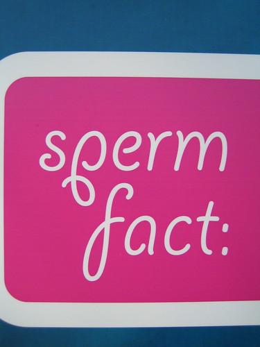 sperm fact