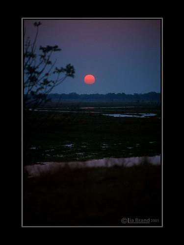 Mana Pools - The Sunset
