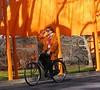 camera-bike (Rochelle Ratner) Tags: gatesmemory gates centralpark orange newyork