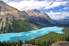 Peyto Lake (Chris & Lara Pawluk) Tags: chris wallpaper lake canada topf25 rockies saveme3 deleteme10 alberta glacial peytolake peyto rockflour