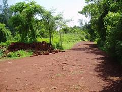 Scott Peck's Road (Atul Sabnis) Tags: road red flickr atul soil maharashtra less traveled sahyadri marathi murud konkan harnai sabnis maratha dapoli