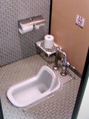 #978 Japanese toilet (Nemo's great uncle) Tags: geotagged japanese toilet japanesetoilet tcat トイレ interestingness345 i500 音入 和式トイレ tokyocityairterminal geo:lat=35682098346218005 geo:lon=13978793098315043