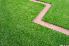 Green Flash (_Marcel_) Tags: green art grass germany dresden zwinger pattern topf grn minimalism muster rasen top20fav flickr10