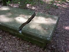 Crypt at Burfordville (trint) Tags: burfordville semo missouri capegirardeau mill village rural grave cemetary gravestones graveyard goth crypt