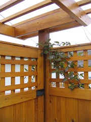 Entry Gate Private Patio Garden - by MaureenShaughnessy (aka MontanaRaven)