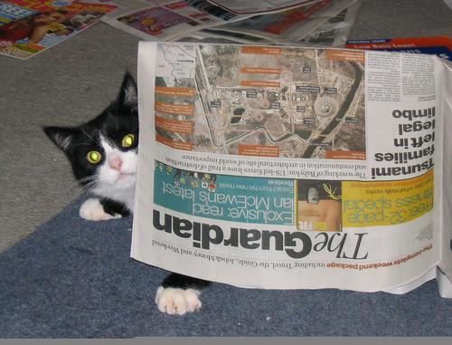 Empatso (Fatso) Peruses the Guardian