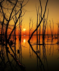 Manasquan Reservoir, NJ
