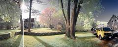 Red Maple Panorama Test (JMichaelSullivan) Tags: betterlight panoramic linhof landscape vanagon westfalia synchro mjsfoto1956 100v10f 100v 200v 400v 500v 1000v 1600v 10f 20f 30f 2000v 3000v 4000v 5000v 6000v