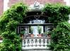 harmony on balcony (Blackwings) Tags: balcony green