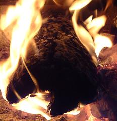 2005-11-28_ 012 (JJSchad) Tags: southdakota blackhills fire tag1 tag2 tag3 taggedout