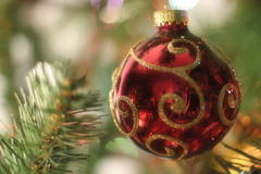 Bauble (hijukal) Tags: christmas red christmastree ornament 100views 400views 300views 200views bauble
