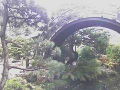Bridge in Japanese Gardens